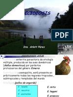 coccidiosispregradosinfoto 2012