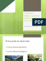 Principios Basicos Para La Restauracion de Rios y