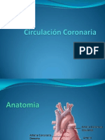 circulacincoronaria-100518181444-phpapp02