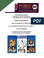 Protectoras anti-éticas (ama) fomentan especismo, el cruel comercio de animales en Guatemala y se aprovechan del trabajo de Las VERDADERAS PROTECTORAS.
