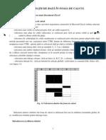 Excel1-Operatii de Baza in Foaia de Calcul
