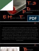 Tema 3 El Hueso Como Tejido PDF 10