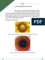 Fibonacci Number in Matlab