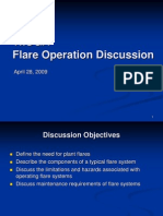 Flare System - Informative
