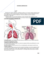 c5 Sistemul Respirator