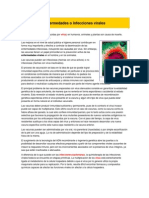 Enfermedades o Infecciones Virales Carpeta2