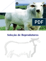 Melhoramento de bovinos de corte_seleção e cruzamento