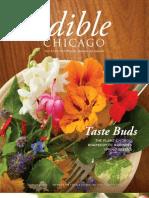 Edible Chicago Spring 12 Radishes Brockman