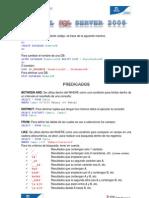 Guía SQL Server 2008