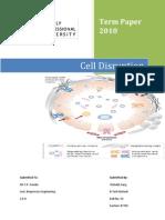Cell Disruption Bio Process