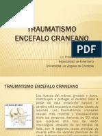 Traumatismo Encefalo Craneano