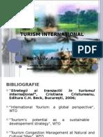 653-Curs 1 Seria B- tea Turismului International
