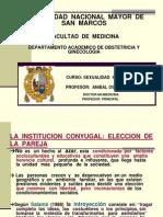 2.-La Pareja Eleccion, Problematic A y Desarrollo Sexual Id Ad 2010