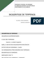 Biossíntese de terpenos - APRESENTAÇÃO