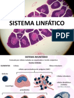 SISTEMA LINFÁTICO NET