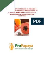 Papaya 2009