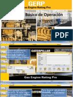 Manual Básico de Operación GERP