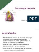 JLOEmbriología dentaria