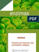 enzimas2010-101115155645-phpapp01