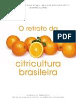 o Retrato Da Citricultura Brasileira Baixa