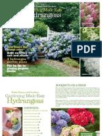 Gardening Made Easy Hydrangeas eBook