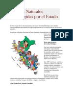 El Perú es uno de los diecisiete países con mayor diversidad biológica en el mundo