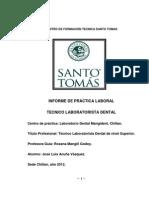 Informe de Practica Profesional Jose Luis Acuña Vasquez