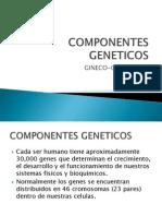 COMPONENTES GENETICOS