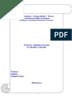 Modelarea Deciziei - SC Profil COM SRL