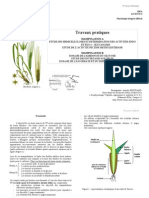 TP Bi514 Physiologie Vegetale (2005-2006)
