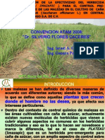 4. Presentacion Plateau ATAM 2008