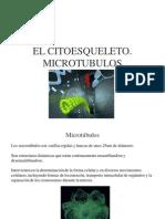 5. Citoesqueleto II. Microtubulos y Agrupaciones Complejas de Microtubulos