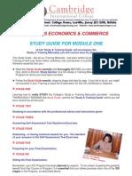 Biz Economics & Commerce