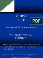 bft CURS 1