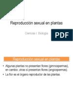 Reproducción sexual en plantas