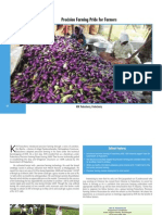 Precision Farming Pride for Farmers-150mt Brinjal