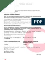 Estandar_de_Competencia.pdf