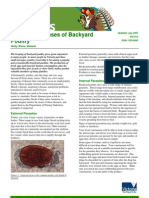 Common Diseases of Backyard Poultry