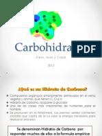 Hidratos de carbono 2012