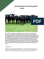 Managementul fermelor de bovine pentru carne