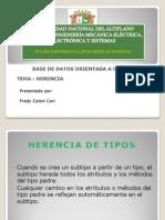 Universidad Nacional Del Altiplano Bda