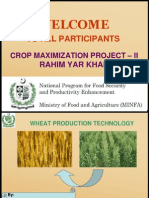 Wheat Production Technology Science Nutrition Business Cropping Breeding