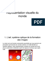 1. Reprsentation Visuelle Du Monde