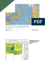 11. Natuna Petroleum Geology