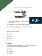 38347148 Exercicios Sobre Folhetos Embrionarios