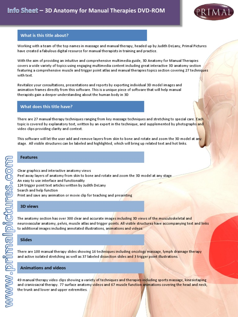 Leaflet 3d Anatomy For Manual Therapies Dvd Rom Massage Manual