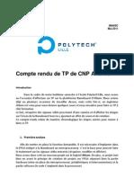 Mendes Garit Rapport Cnp Avance