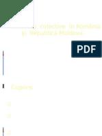 ti Colective in Romania Si Republica Moldova Vulpearhirii
