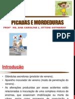 PICADAS E MORDEDURAS