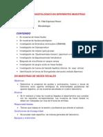 Examen Parasitologico en Diferentes Muestras